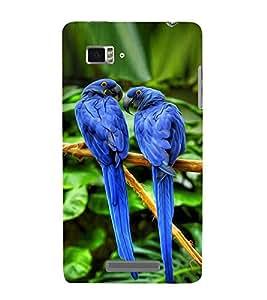 Vizagbeats blue parrots Back Case Cover for Lenovo Vibe Z K910