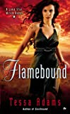 Flamebound: A Lone Star Witch Novel