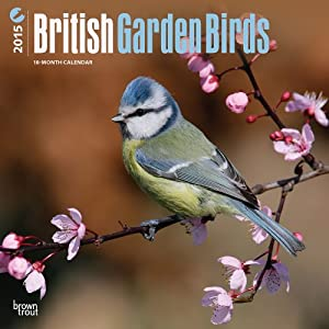British Garden Birds 2015 Wall
