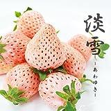 【産地直送】 熊本県産 淡雪 白イチゴ いちご 桜色 苺 秀品 M?2Lサイズ 贈答 景品 御祝 (2パック( 400g強 ))