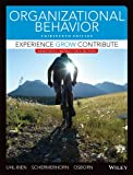 img - for Aie Organizational Behavior * Experience Grow Contribute 13e book / textbook / text book