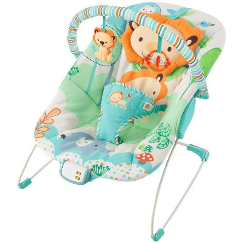 Bright Starts Playful Pals Owl Lion Bird Vibrating Bouncer Chair Seat New Nib front-198856