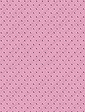Cuttlebug A2 Embossing Folder, Swiss Dots