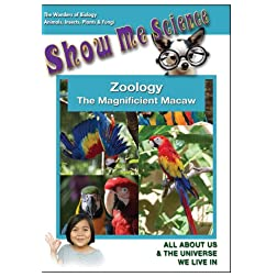 Zoology - The Magnificient Macaw