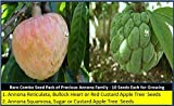 Seedstores : Rare Combo Seed Pack 2 in 1 - Precious Annona Species 10 Seeds Each for Growing