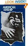 American Kinship: A Cultural Account (Anthropology of Modern Societies)