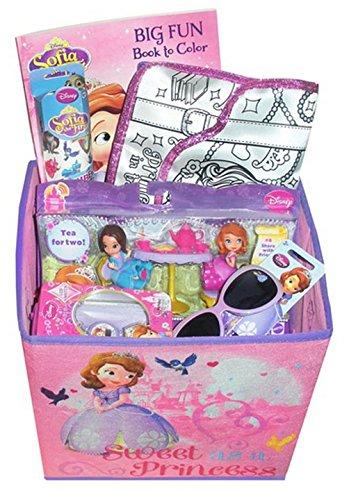 Disney Princess Sofia Gift Basket - Perfect For Easter Basket, Birthdays, And/Or Christmas
