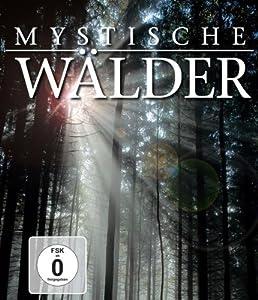 Mystische Wälder [HD DVD]