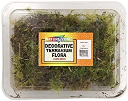 Nature Zone SNZ52414 Terrarium Flora Reptile Bedding/Substrate, Feather Moss, 1/2-Pound
