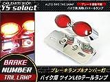 ツイン LED テール ランプ ナンバー灯付 バイク メッキ