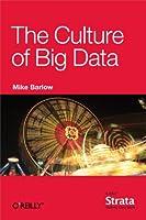 The Culture of Big Data