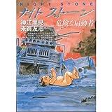 ナイトストーン 2―危険な扇動者 (近代麻雀コミックス)