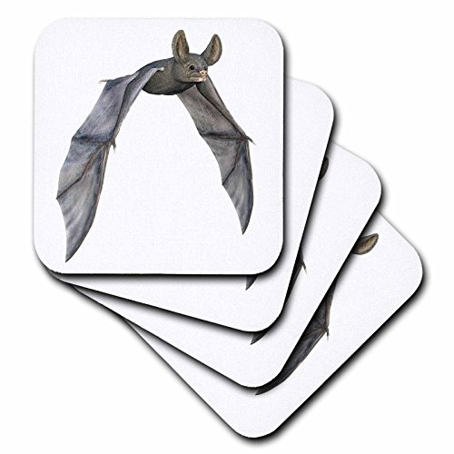Boehm Graphics Animal - Bat from the Front with Wings Down - set of 4 Coasters - Soft (cst_239804_1)