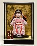 【市松人形】6号 木目込チリメン衣装市松:京華作 ケース付きセット【木目込市松人形】【浮世人形】