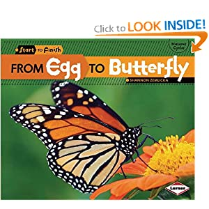 From Egg to Butterfly (Start to Finish: Nature's Cycles)