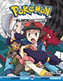 Pokémon Black and White, Vol. 12 (Pokemon)