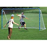Multi-Sport 6 in 1 Tilting Goal in Blue w Backstop by EZGoal