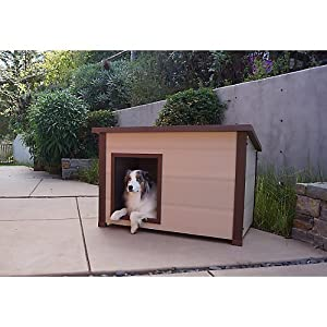 Amazon Com Ecoflex Insulated Dog House Flat Roof Pet