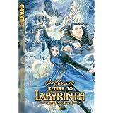 Return to Labyrinth Volume 3 (v. 3) ~ Jake T. Forbes