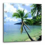 3drose Tropical Paradise Wall Clock, 10 by 10-Inch