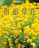 毎年花咲く宿根草花 (別冊NHK趣味の園芸)