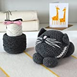 Kitten Crochet Kit. 100% Lambswool yarn NO acrylic! - Everything you need including Stuffing