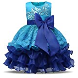 NNJXD Girl Ruffles Vintage Embroidered Sequins Flower Wedding Dress Size (120) 4-5 Years Blue
