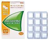【指定第2類医薬品】ニコレットフルーティミント 48個 ランキングお取り寄せ