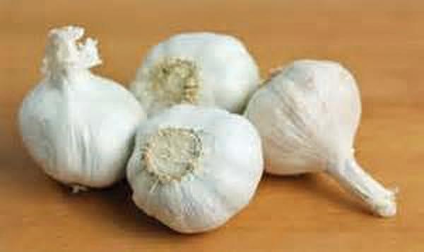 Softneck Garlic Bulbs
