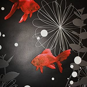 Rasch 817508 papier peint en relief motif poisson rouge noir mode - Papier peint poisson rouge ...