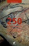 echange, troc Xavier Delestre - 250 réponses à vos questions sur l'archéologie