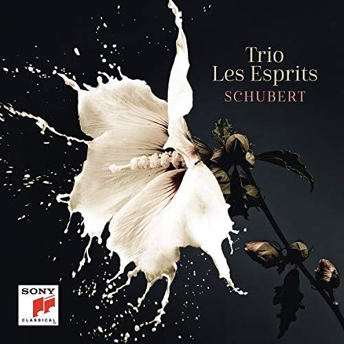 CD : TRIO LES ESPRITS - Schubert (2 Discos)