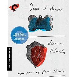 Gates of Heaven/Vernon, Florida [Blu-ray]