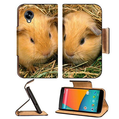 Best Guinea Pig Bedding 9268 front