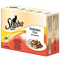 Sheba Delikates Duo