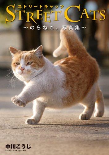 STREET CATS -のらねこ。写真集-