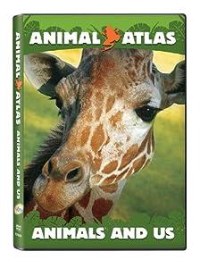 Animal Atlas: Animal and Us