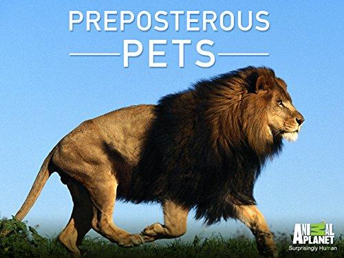 Preposterous Pets Season 1