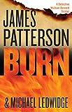 Burn (Michael Bennett Book 7)