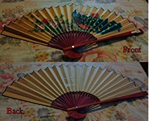 Chinese Decorative Wall Fan Hand Painted