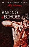 Among The Echoes (Wrecked and Ruined)
