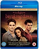 The Twilight Saga: Breaking Dawn - Part 1 (Single Disc) [Reino Unido] [Blu-ray]