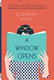 img - for A Window Opens: A Novel book / textbook / text book