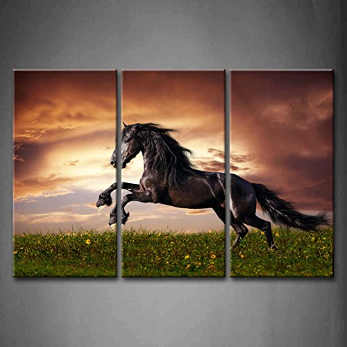 3 Panel Wall Art Black Friesian Running Horse Gallop On The Field On Sunset Grass And Flower Painting Pictures Print On Canvas Animal The Picture For Home Modern Decoration Piece (Stretched By Wooden Frame,Ready To Hang)