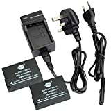 DSTE® 2pcs Replacement Battery + Charger DC115U for Panasonic DMW-BLD10, DMW-BLD10E, DMW-BLD10PP, DE-A93B and Panasonic Lumix DMC-G3, DMC-GF2, DMC-GX1