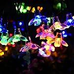 Litom Solar Outdoor String Lights Wat...