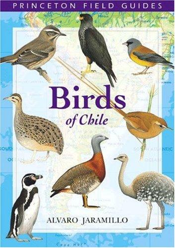 Birds of Chile (Princeton Field Guides), by Alvaro Jaramillo