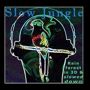 Slow Jungle: Rainforest In 3d & Slowed Down