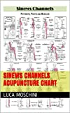 Sinews Channels Acupuncture Chart