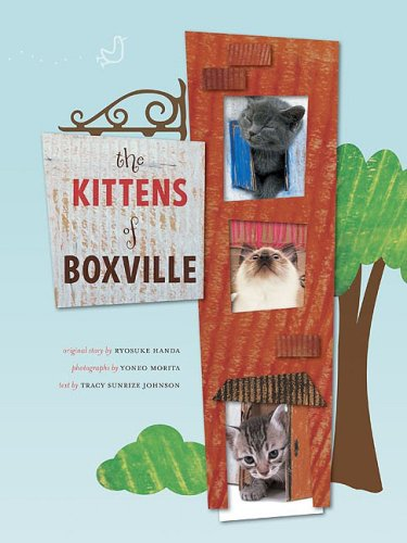 Kittens of Boxville: Ryosuke Handa, Yoneo Morita, Tracy Johnson: 9780811867238: Amazon.com: Books
